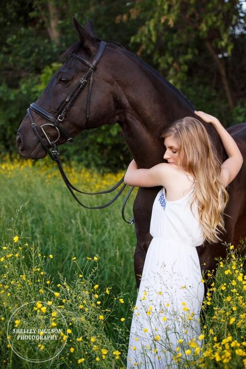 orono-mn-equine-photographer-12.JPG