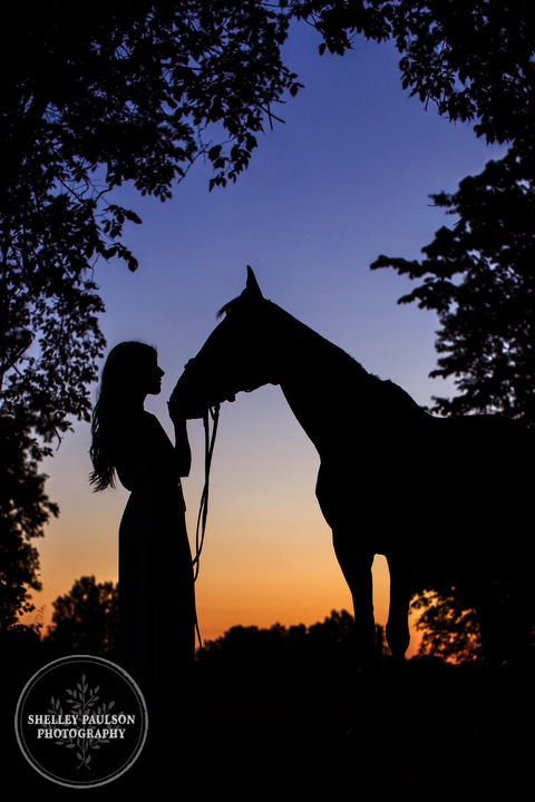 orono-mn-equine-photographer-13.JPG