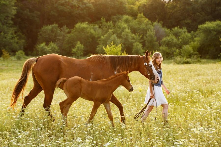 minnesota-senior-with-horse-04.JPG