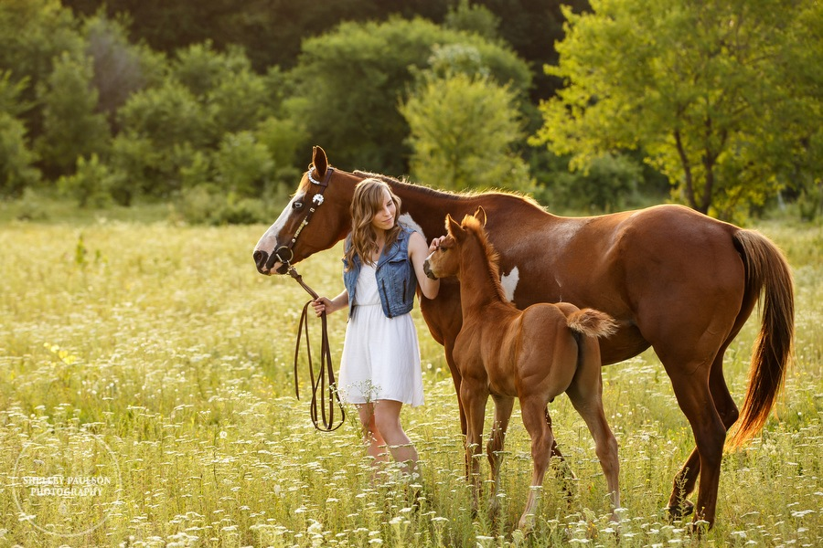 McKayla's Senior Photos with Dream and her cute foal Blaze