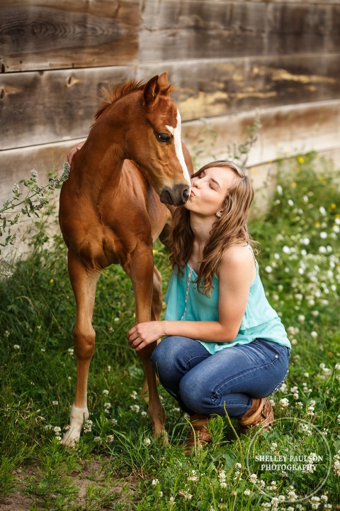 minnesota-senior-with-horse-13.JPG