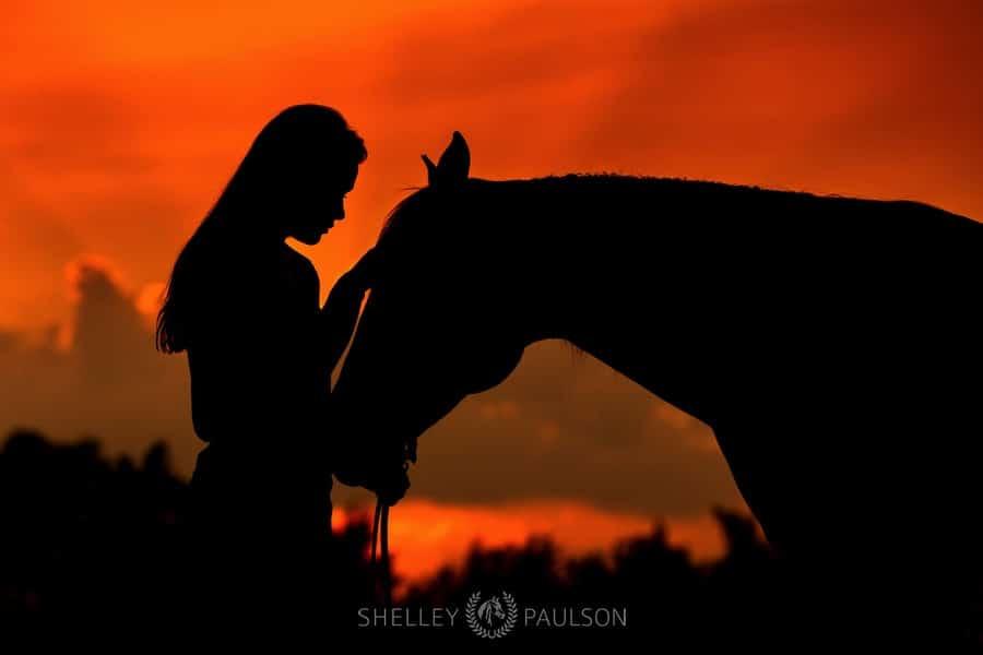 family-photos-with-horses-09.JPG
