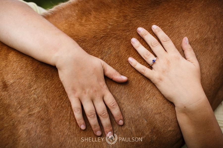 end-of-life-equine-photos-07.JPG