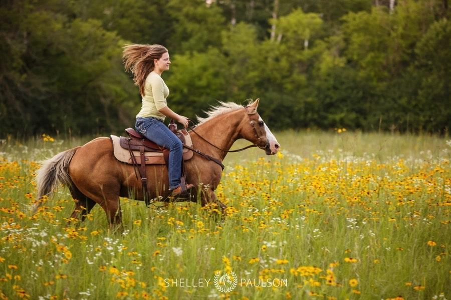 end-of-life-equine-photos-14.JPG
