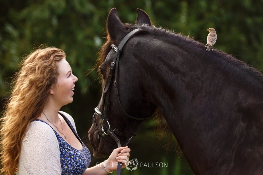 minnesota-equestrian-senior-01.JPG
