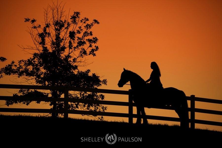 minnesota-equestrian-senior-12.JPG