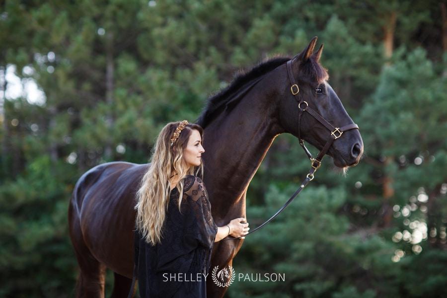 Minneapolis Equine Photographer