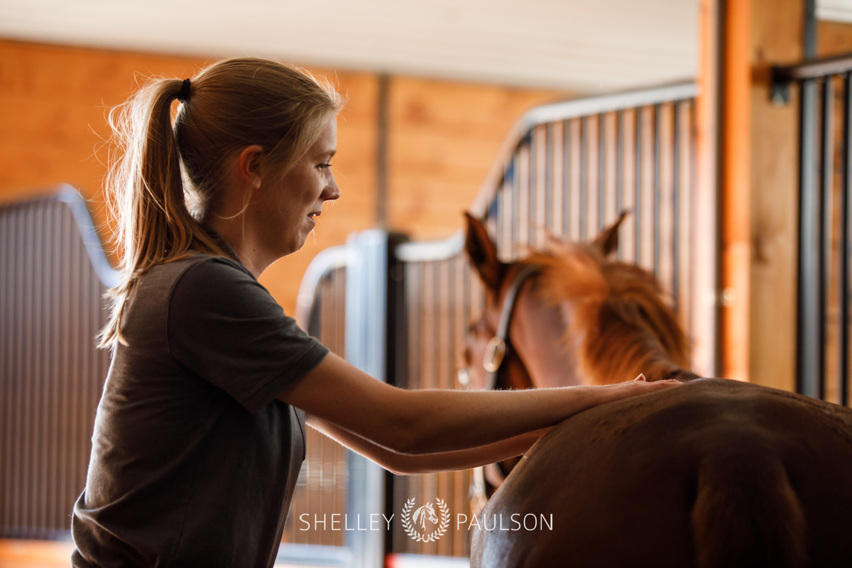 Branding Photography for Kyla Awes – Equine Chiropractor