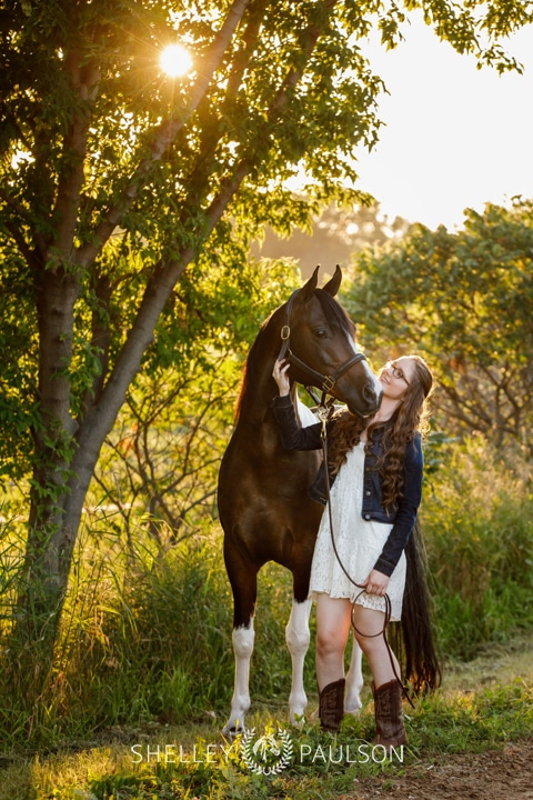 Minnesota Equine Portrait Photographer