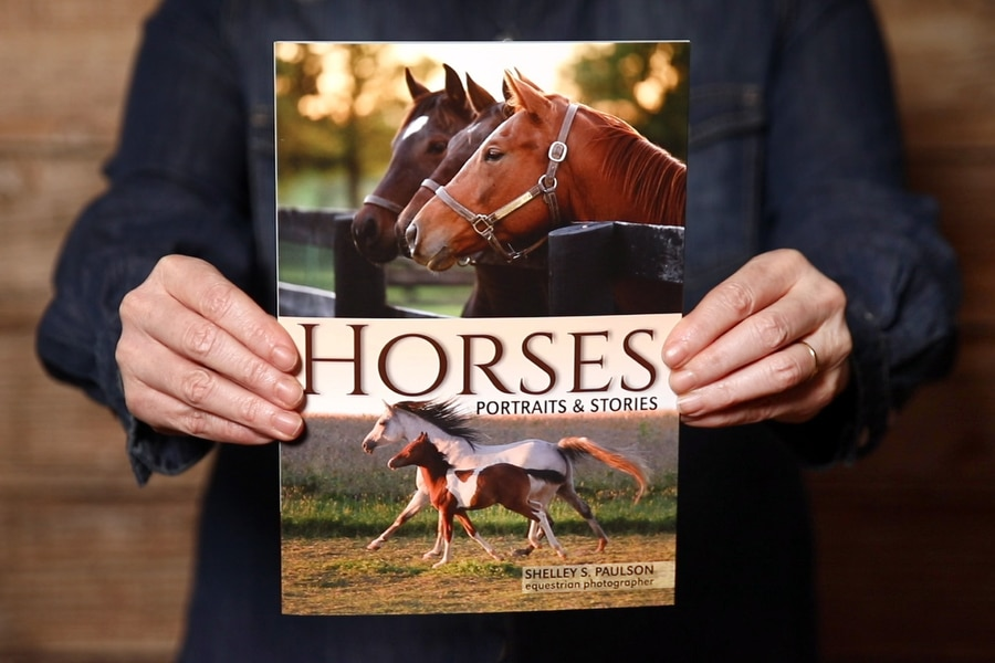 Announcing my New Book – Horses, Portraits & Stories!