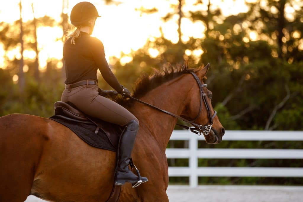 Introducing – Equestrian Lifestyle Sessions