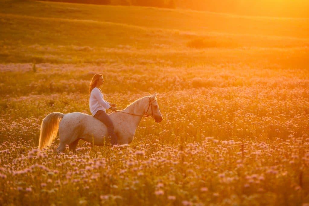 Amelia and her Horse Keno
