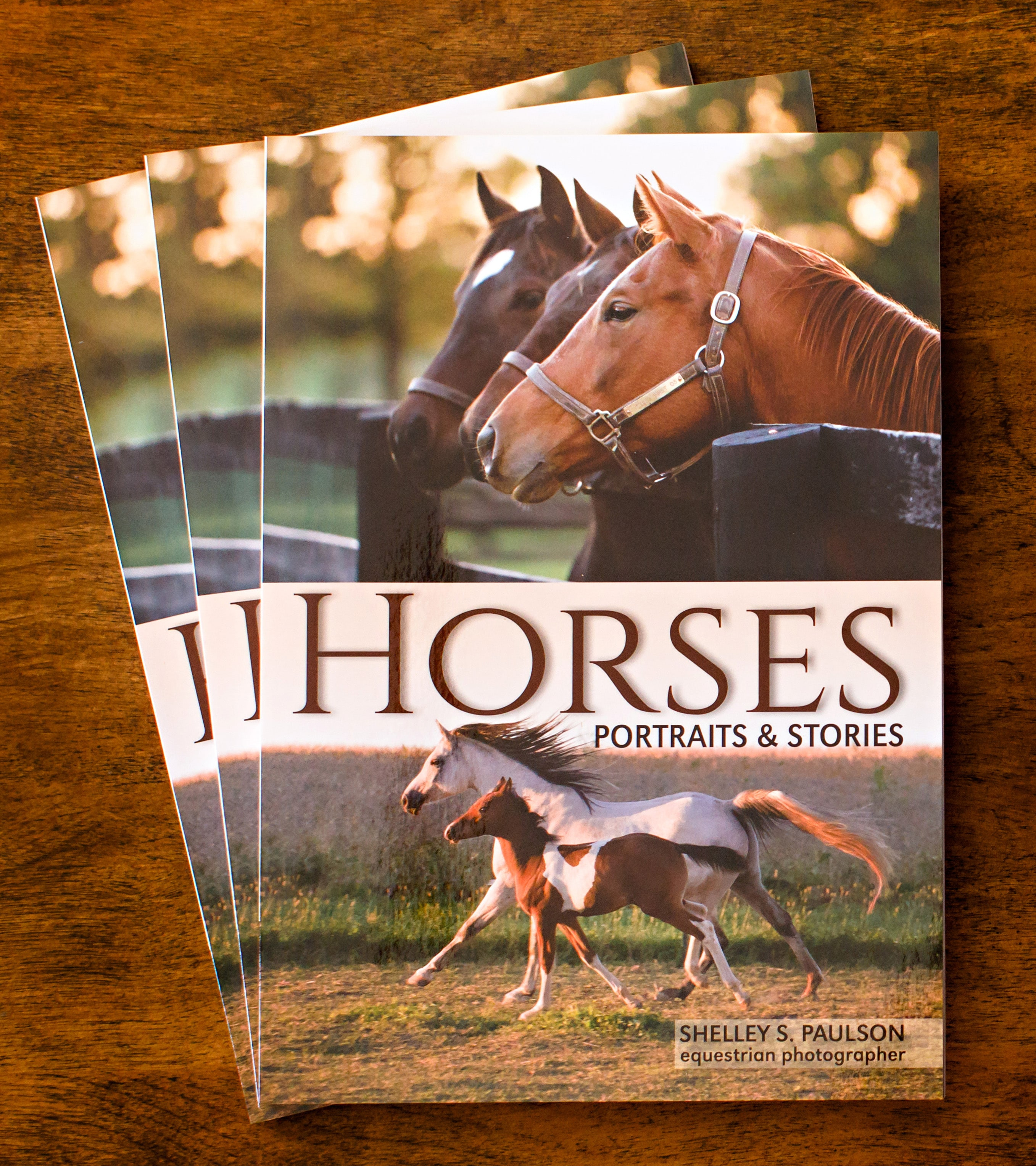 Horses, Portraits and Stories Book