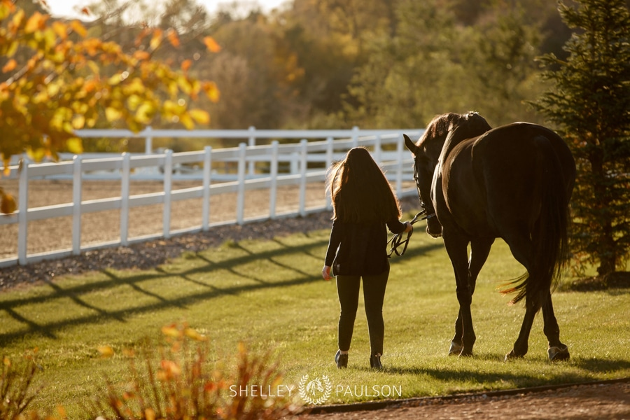 Bianca and her Horses Lou and Cenna
