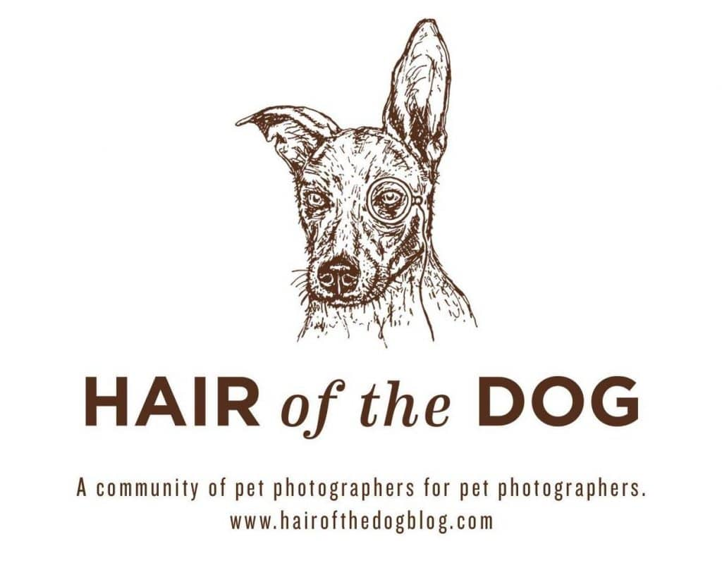 Live Interview with Hair of the Dog