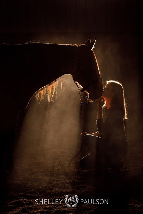 Woman kissing horse in fog