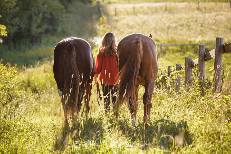 Photo of a girl walking away with her horses.