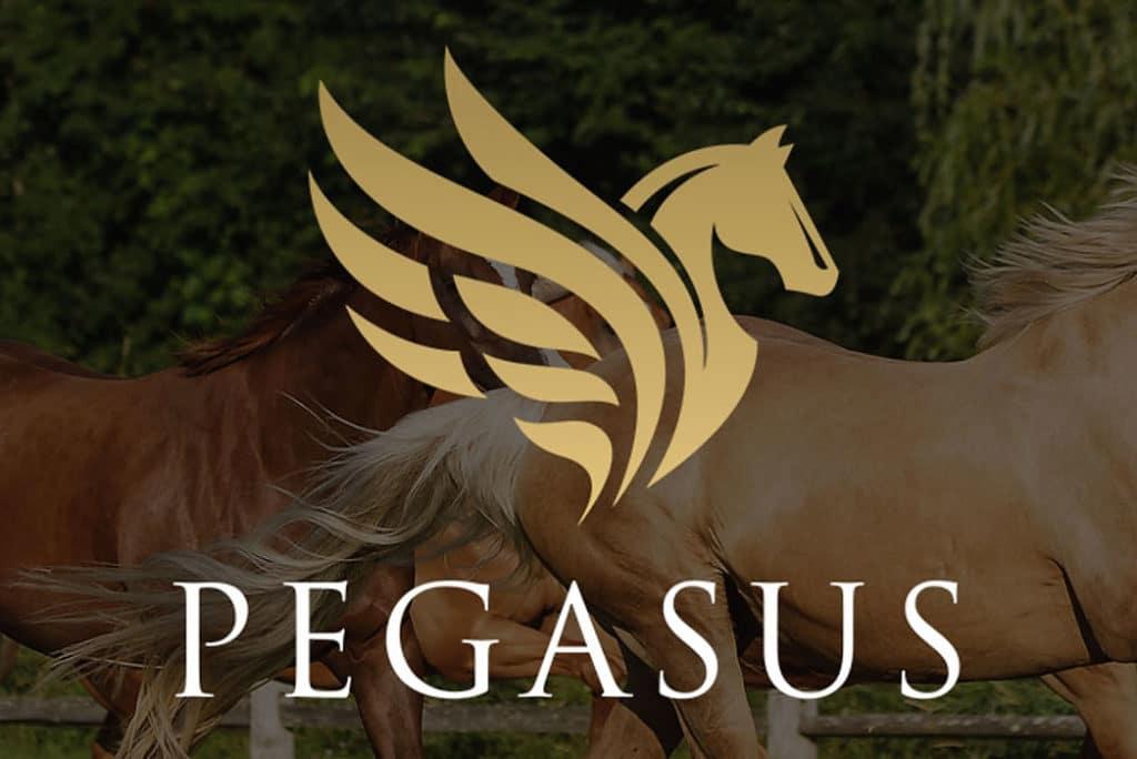 Pegasus Mentorship Closes Tomorrow!
