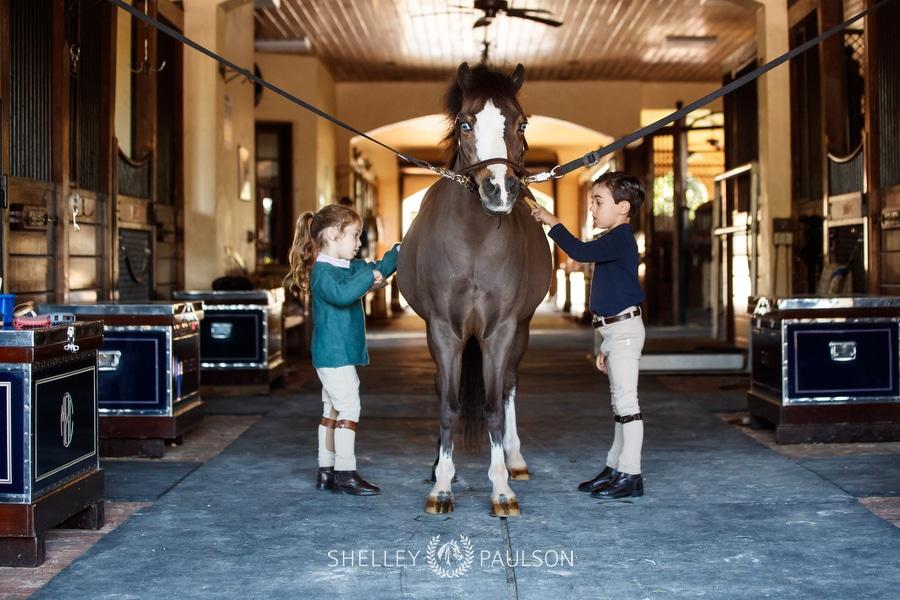 A boy and girl groom their pony