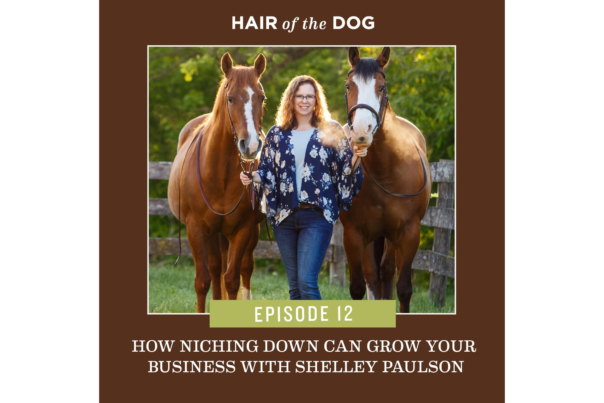 Podcast with Hair of the Dog Academy
