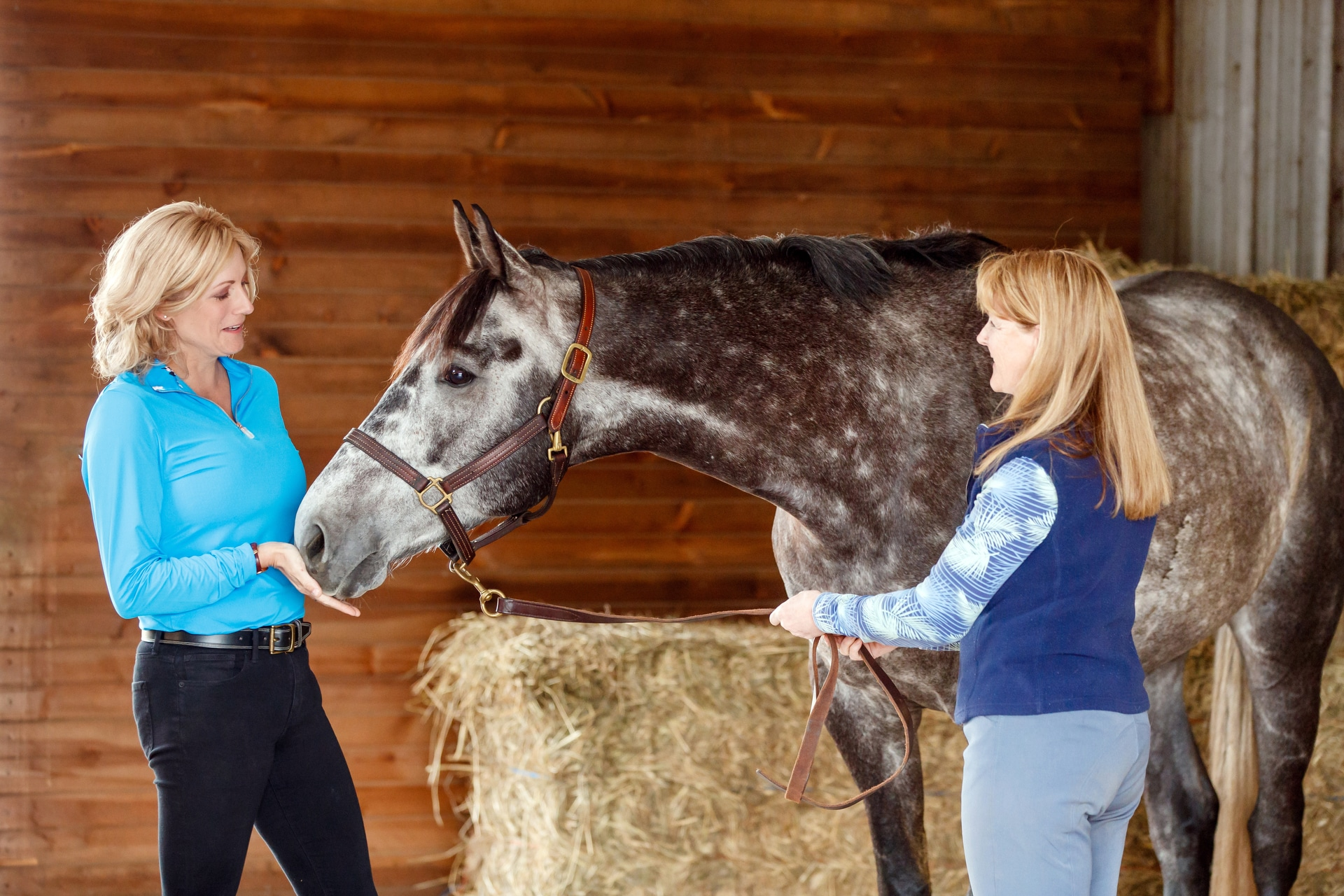 Legacy Equine Nutrition Branding Session