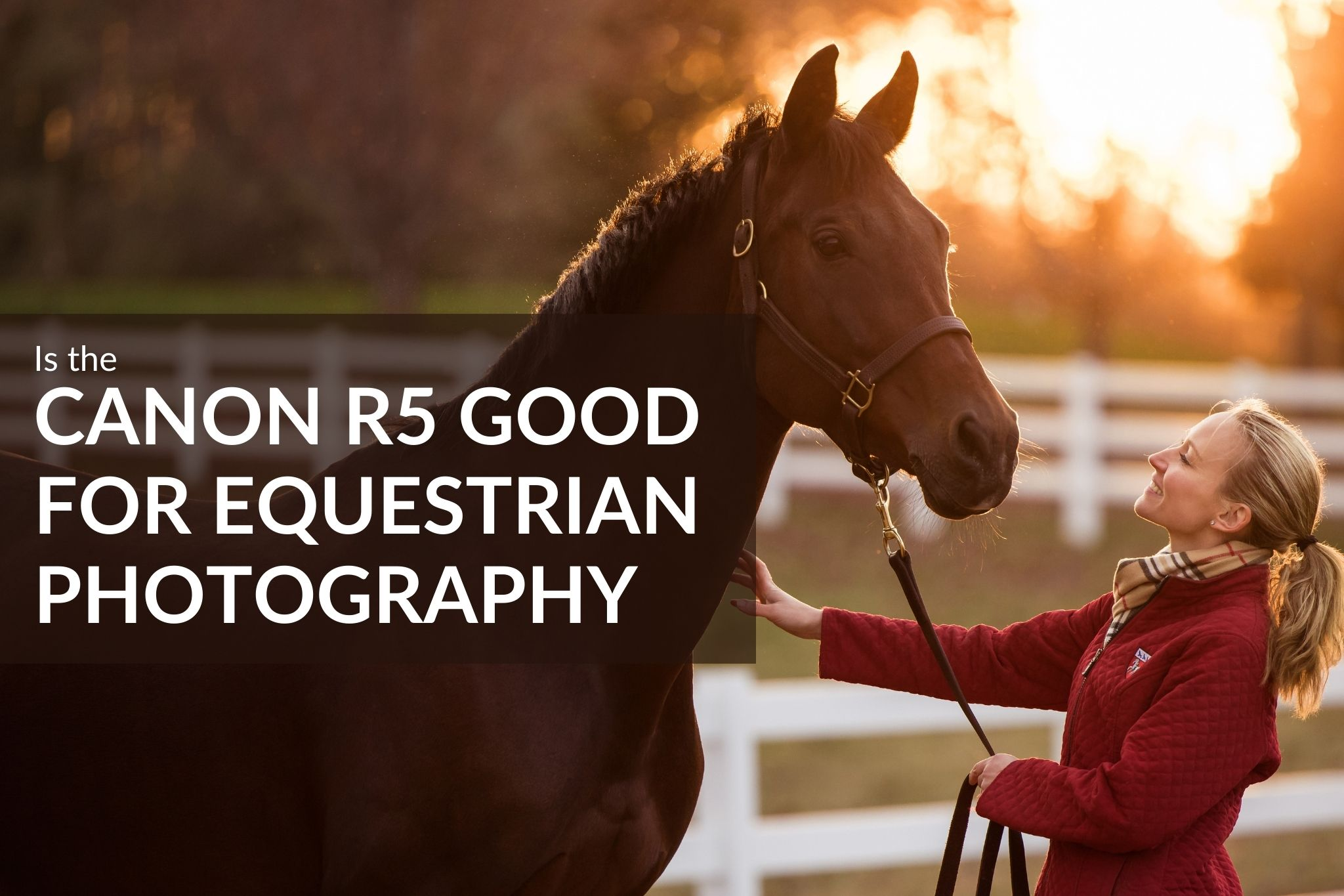 New Video Blog – Is the Canon R5 Good for Equestrian Photography?