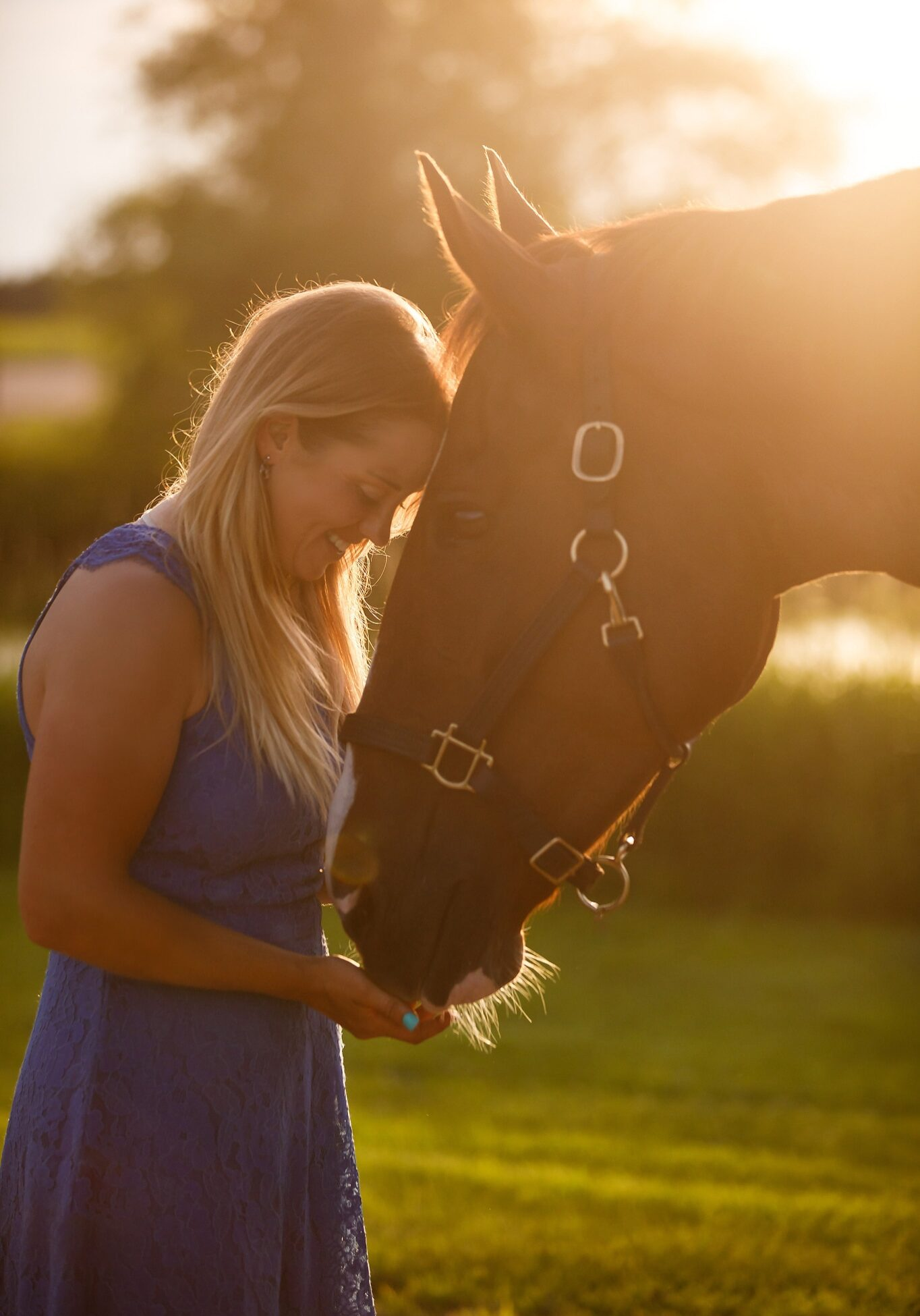 Equestrian Portrait Photography Shelley Paulson