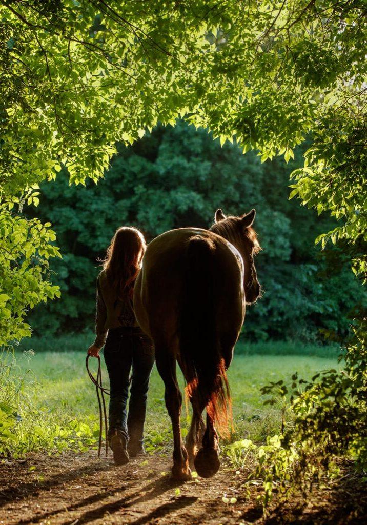 Horses & Humans, Western
